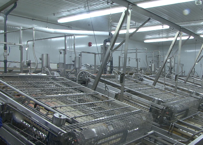 Fully automated peeling system